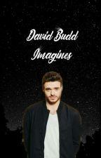 David Budd / PS Budd Imagines by chalishashington