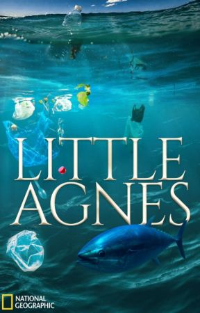 Little Agnes.   #PlanetOrPlastic by tiyamalik