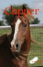Copper by amandafaybecker