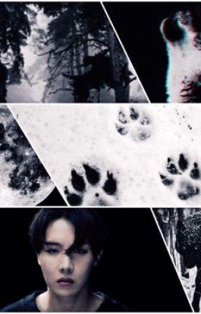 {BTS Hoseok FF} Werewolf  by BTSTRASHJIMINEPABO6
