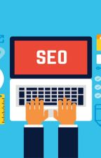 How Important Is SEO to the Success of Your small/large Business? by nowherashaik2664
