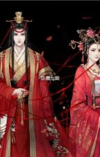 novel china by wangfeiconsort