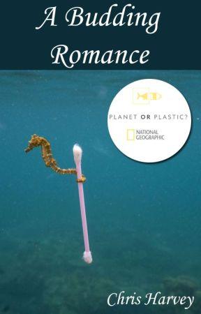 A Budding Romance #PlanetOrPlastic by TheDuckA