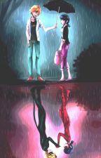 The last Akuma - A miraculous story ✔️ by Uni_Rainbows_14