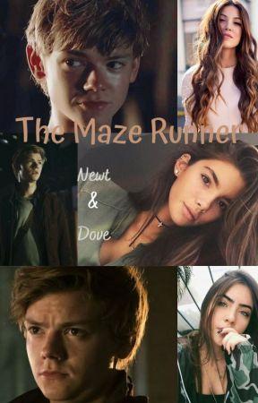 The Maze Runner by val_dreamer