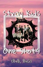 Stray Kids One-Shots (BxB, BxG) by CreatureChanLixQueen