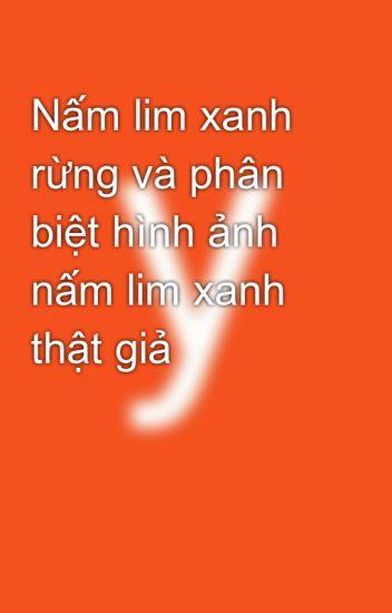 Nấm Lim Xanh Rừng Và Phân Biệt Hình Ảnh Nấm Lim Xanh Thật Giả - Yen Nguyen  - Wattpad