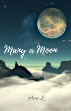 Many a Moon by Amyuqi