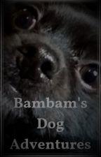 Bambam's Dog Adventures(REMASTERED) by BambamTheDog
