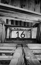 16 by achievementhunterr
