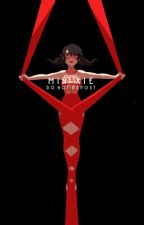 Miraculous Ladybug Fanfic (Marinettte X Adrien) Princess Marinette by punygirl
