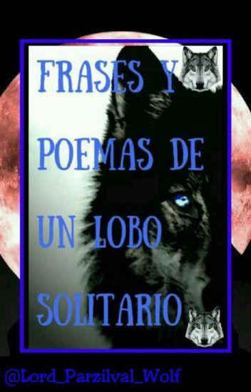 Frases Y Poemas De Un Lobo Solitario Continuación