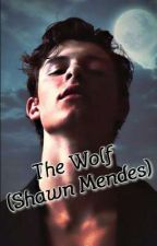 The Wolf (Shawn Mendes) by roxy639