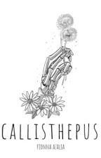 CALLISTHEPUS  |  Fionna Azalia by teenscribble