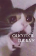 Quote of the Day by chickentaters