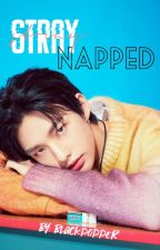 AMBW Stray-napped Hyunjin *stray kids* by blackpopper