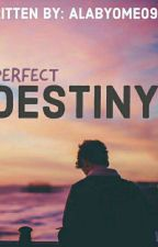 Perfect Destiny by alabyome0916