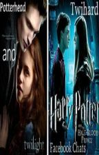 Potterhead and Twihard Facebook Chats! by LEGandRLM