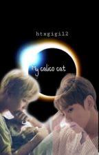 My Calico Cat { Jikook } by htxgigi12