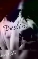 DESTINO by lauraKarinaSuarez