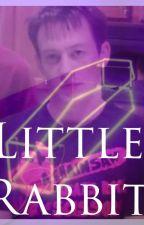 Little Rabbit   Evan Jennings/HABIT; EMH by DarlingScoundrel