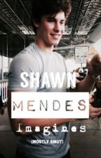 Shawn Mendes Imagines (mostly smut) by mendes_imaginesx