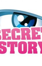 Secret Story by antobsims