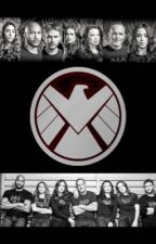 Agents of S.H.I.E.L.D.  by LadyArwenEvenStar