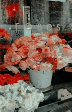 ✓   LOVE, CAROLYN ━━ Spencer Reid ¹ by okaywickersham