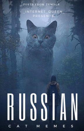 Russian Cat Memes by _internet_queen_