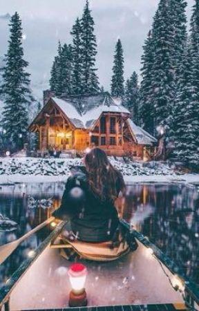 The Christmas Lodge.The Christmas Lodge A Original Story Blurb The Cast
