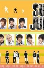 FACTS ABOUT SUPER JUNIOR by MMCouple
