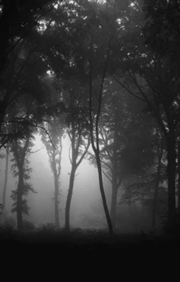 Susurros de Las Sombras