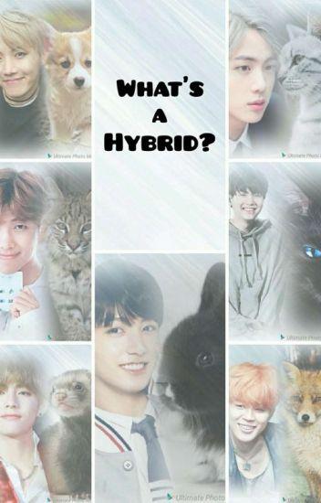 What S A Hybrid Bts X Reader