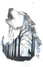 Wolf Girl ( Une nouvelle arrivante) by Kenzie_Crazy