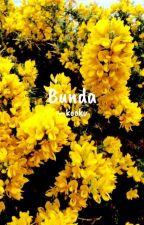 BUNDA : KookV by AgathaZora