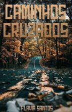 Caminhos cruzados by falzinha21