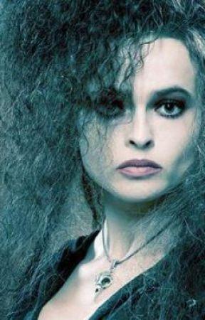 Bellatrix Lestrange & her sister Annalee Black by stormfan1393
