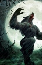 All about werewolves (A writer's guide) by cupcake24342434