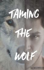 Taming the Wolf by 0-madness_is_key-0