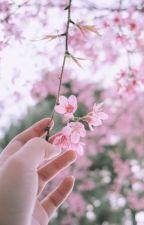 Bình An Thiên Thiên by Lien_Nhi