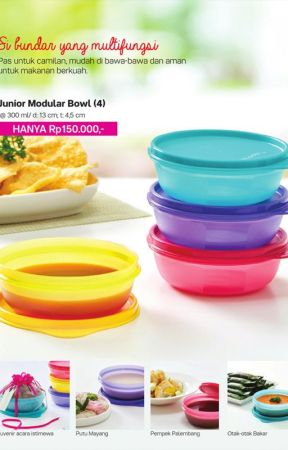 Tupperware Junior Modular Bowl (4) | Agen Tupperware Kebumen