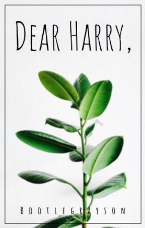 dear harry, || h.h. by euphorichxlland