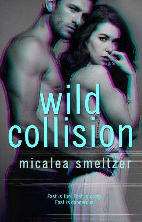 Wild Collision by micaleasmeltzer