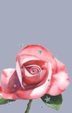 La Vie En Rosé by Voustmevoyes