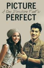 Picture Perfect: A One Direction Fan Fiction by locating1d