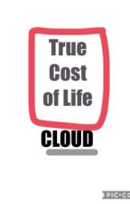 True Cost of Life by Cloud5432