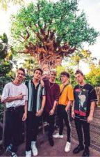 kidnapped / why don't we  by wdwfans123