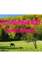 _ Voltigierinternat Neuss - Grimmlinghausen _ by _horsebook_