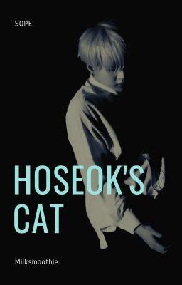 mèo nhỏ yoongi thích cái gì?